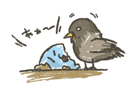 鳥「うめぇ」